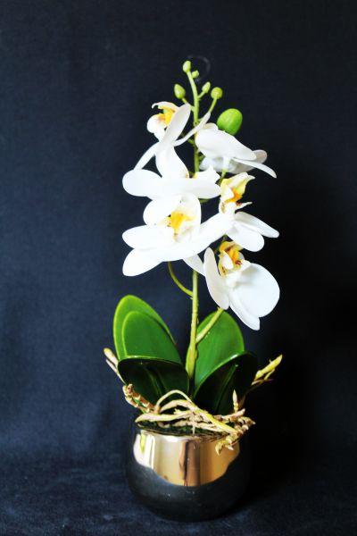 """Orchidee Phalaenopsis """"Lambros"""" Höhe 25 cm, weiß-silber, künstlich"""