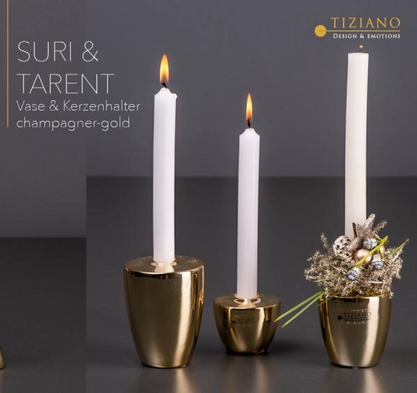 Tischlicht Tarent champagner/gold von Tiziano